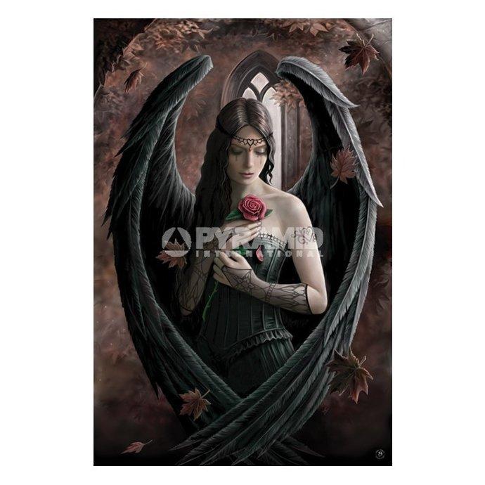 plakát Anne Stokes (Angel Rose) - PP32093