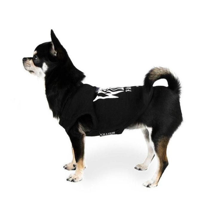 psí obleček KILLSTAR - Familiar Dog