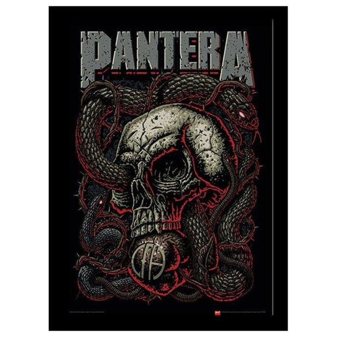 obraz Pantera - Snake Eye - PYRAMID POSTERS