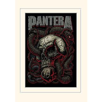obraz Pantera - (Photo) - PYRAMID POSTERS, PYRAMID POSTERS, Pantera