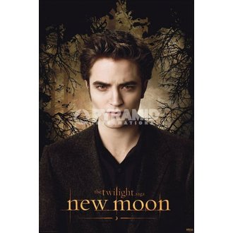 plakát Twilight - New Moon (Edward Trees) - PYRAMID POSTERS, TWILIGHT