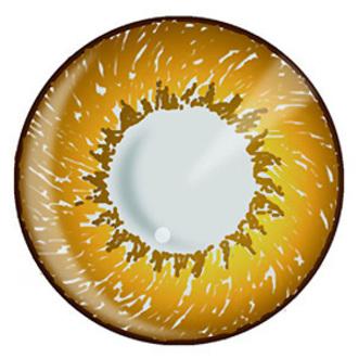 kontaktní čočka Hazel 3 Tone - EDIT, EDIT