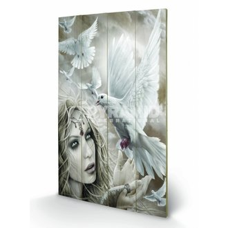 dřevěný obraz Spiral (Doves Of Peacel) - Pyramid Posters, SPIRAL