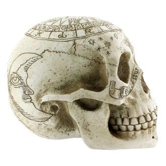 dekorace Astrological Skull