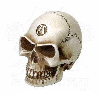 dekorace (hlavice řadicí páky) ALCHEMY GOTHIC - Alchemist Gear Knob: Bone