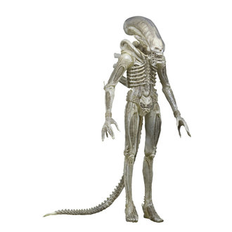 figurka Alien (Vetřelec) - 1979 1/4 Transculent Prototype Figure Suit Concept - NECA51626