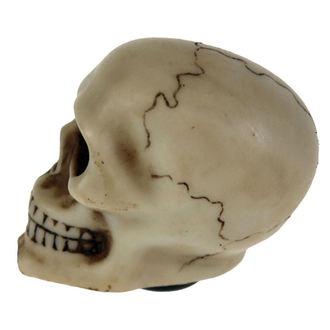 dekorace (hlavice řadící páky) Skull Gear