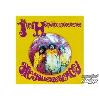 figurka (3D obrázek) JIMI HENDRIX are you experienced plaque Figure, NNM, Jimi Hendrix