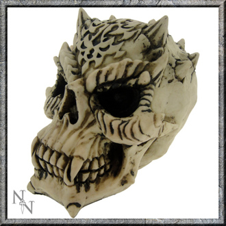 dekorace Lebka - Celtic Savage Skull - C0096A3