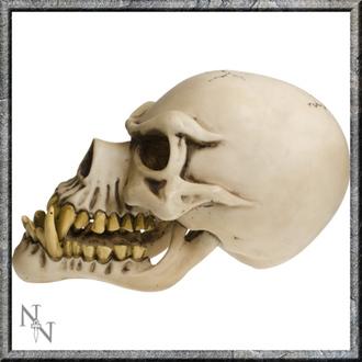 dekorace Lebka - Wolfman Skull