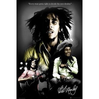 plakát - BOB MARLEY destiny - LP1328, GB posters, Bob Marley