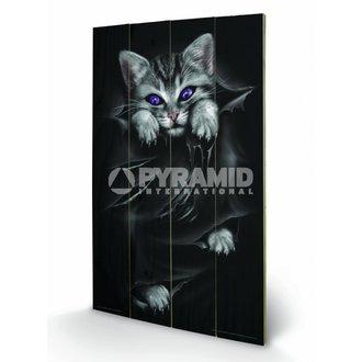 dřevěný obraz Spiral (Bright Eyes) - Pyramid Posters - LW10312P