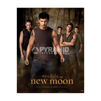 plakát Twilight - New Moon (Wolf Pack) - MPP50303, TWILIGHT