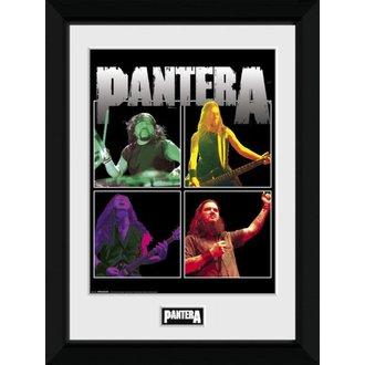 obraz Pantera - GB posters, GB posters, Pantera