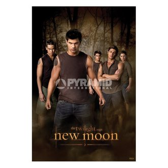 plakát Twilight - New Moon (Wolf Pack) (Stmívání) - PP32065, TWILIGHT