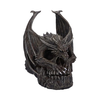 dekorace Draco Skull - B5313S0