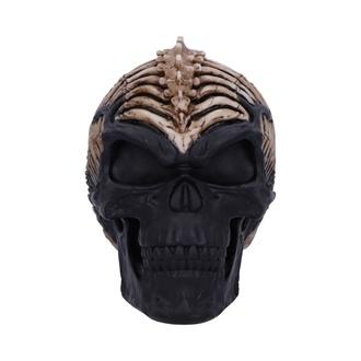 dekorace Spine Head Skull, NNM