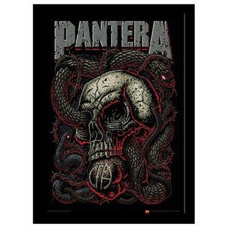 obraz Pantera - Snake Eye - PYRAMID POSTERS, PYRAMID POSTERS, Pantera