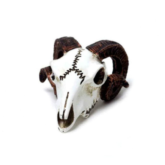 dekorace ALCHEMY GOTHIC - Rams Skull - VM1