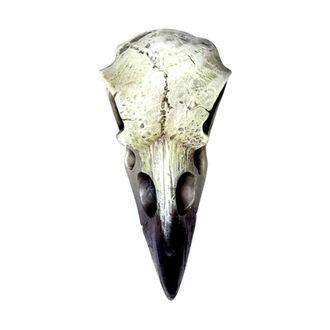dekorace ALCHEMY GOTHIC - Small Raven Skull - V66