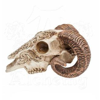 dekorace ALCHEMY GOTHIC - Skrimshaw Ram Skull, ALCHEMY GOTHIC