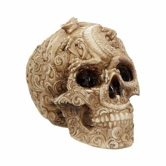 dekorace Cranial Drakos - U4465N9