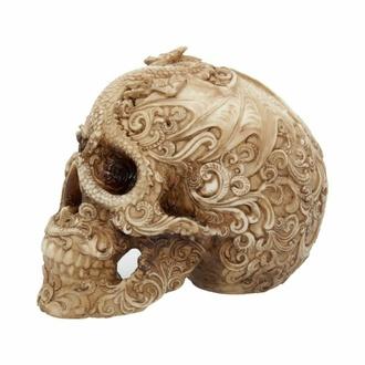 dekorace Cranial Drakos, NNM