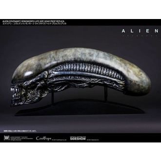 figurka Alien: Covenant - Xenomorph Head, NNM, Alien